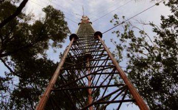 Torre medición carbono