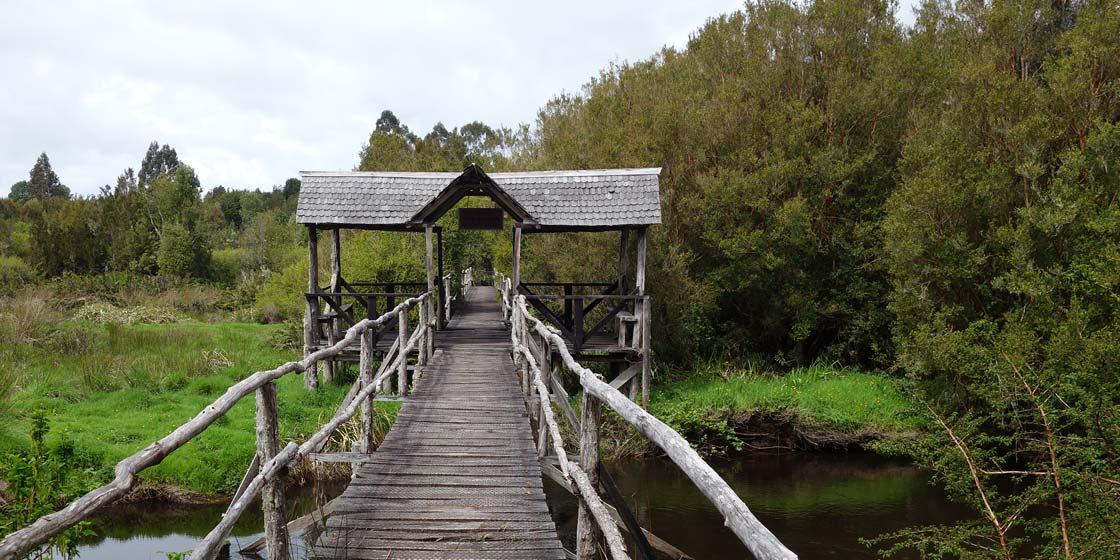 Puente entrada Estación Biológica Senda Darwin