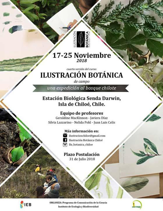 Afiche curso ilustración botánica