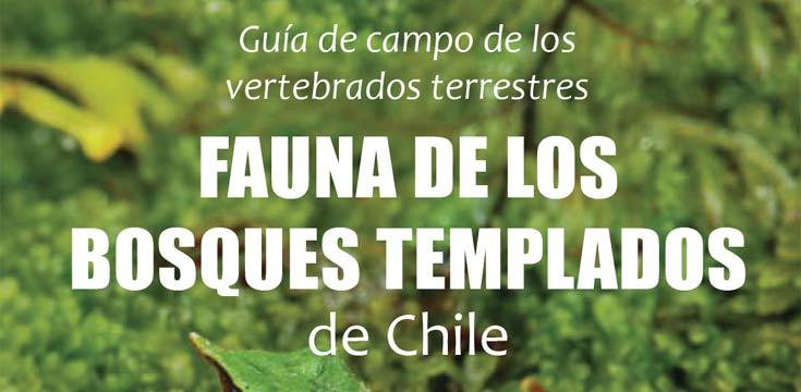 fauna de los bosques templados p