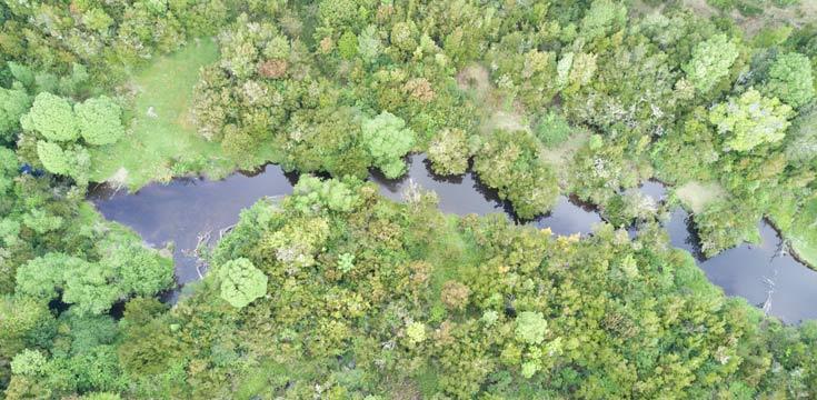 Río Huicha