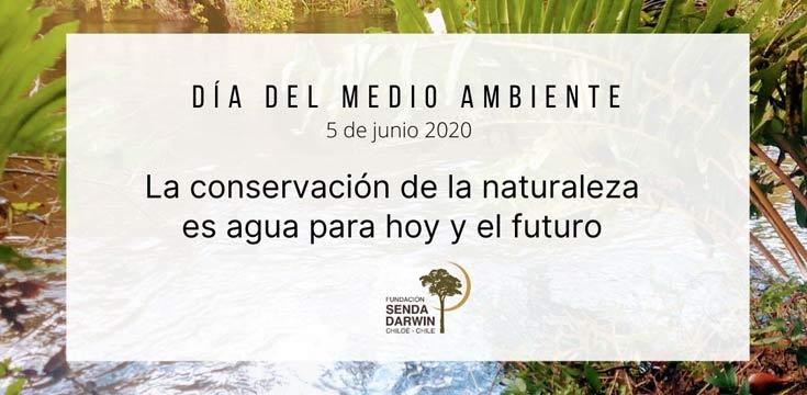 dia mundial del medio ambiente mesa del agua